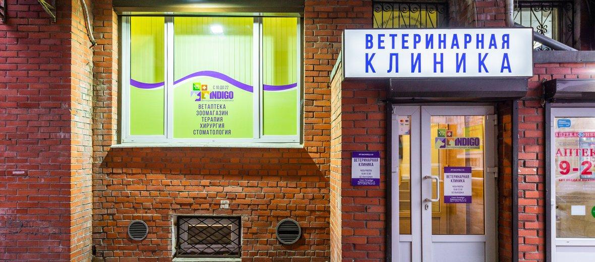 Фотогалерея - Ветеринарная клиника INDIGO на улице Будапештская