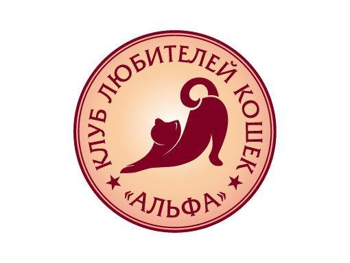 клуб альфа кошки москва