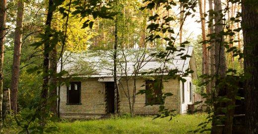 фотография База активного отдыха Гагарино в Дзержинске