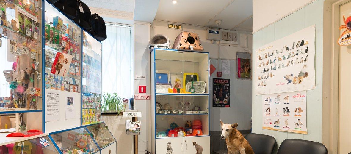 Фотогалерея - Ветеринарная клиника Котёнок Гав на бульваре Новаторов
