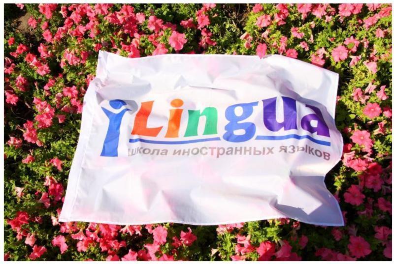 фотография Ilingua
