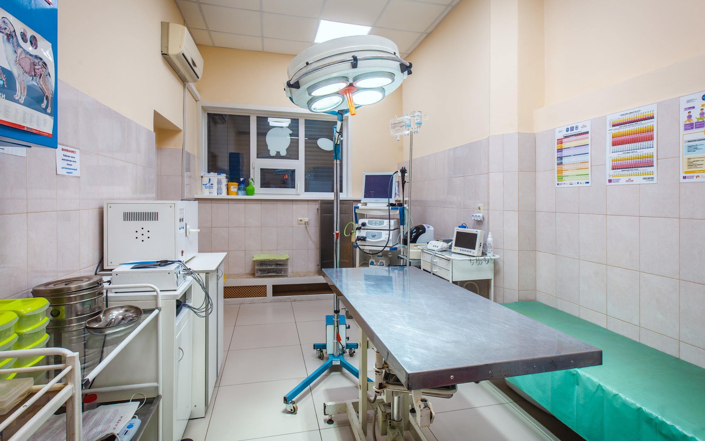 фотография Ветеринарной клиники Акела в Вешняках