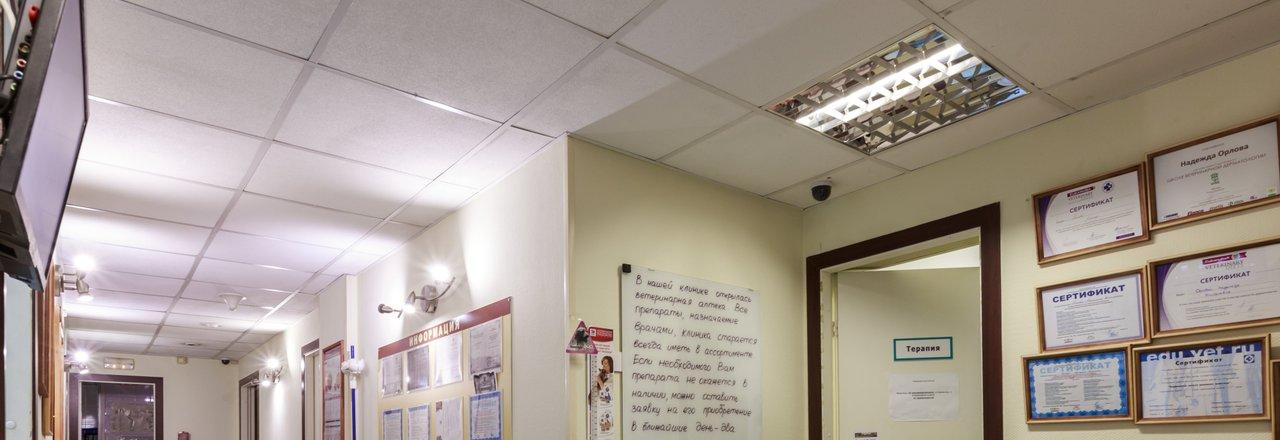 фотография Ветеринарной клиники ПАНВЕТ на 1-й Дубровской улице