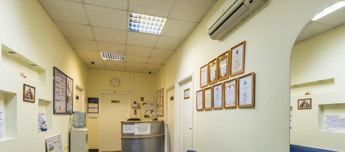 Фотогалерея - Сеть медицинских центров МедЦентрСервис