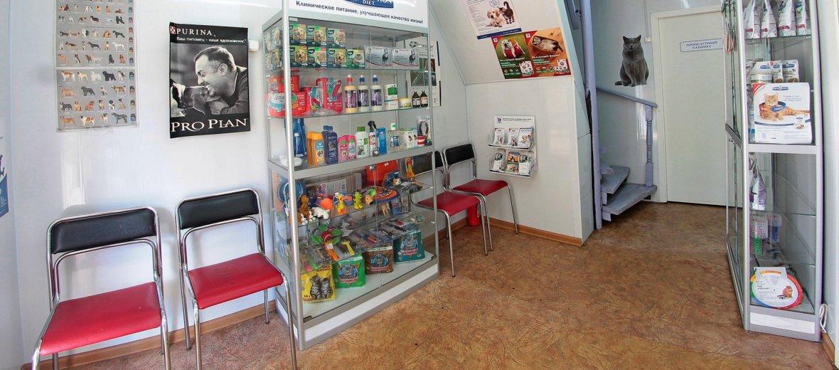 Фотогалерея - Avet, ветеринарная клиника
