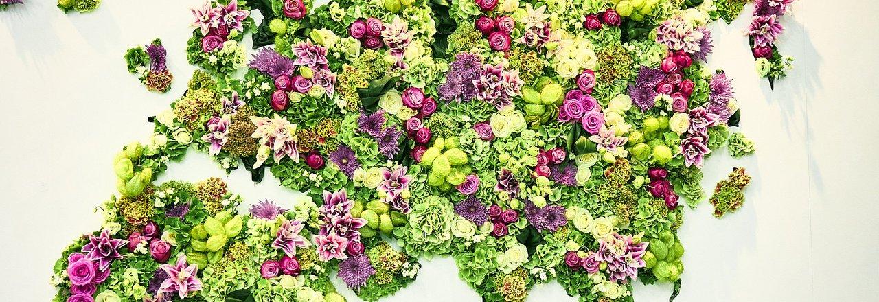 фотография Оптово-розничный склад-магазин цветов на проспекте Металлургов, 2д стр 5