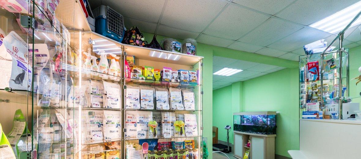 Фотогалерея - Ветеринарная клиника ЧЕЛСИ на Будапештской улице