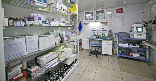 фотография Ветеринарной клиники Лион на улице Чайковского
