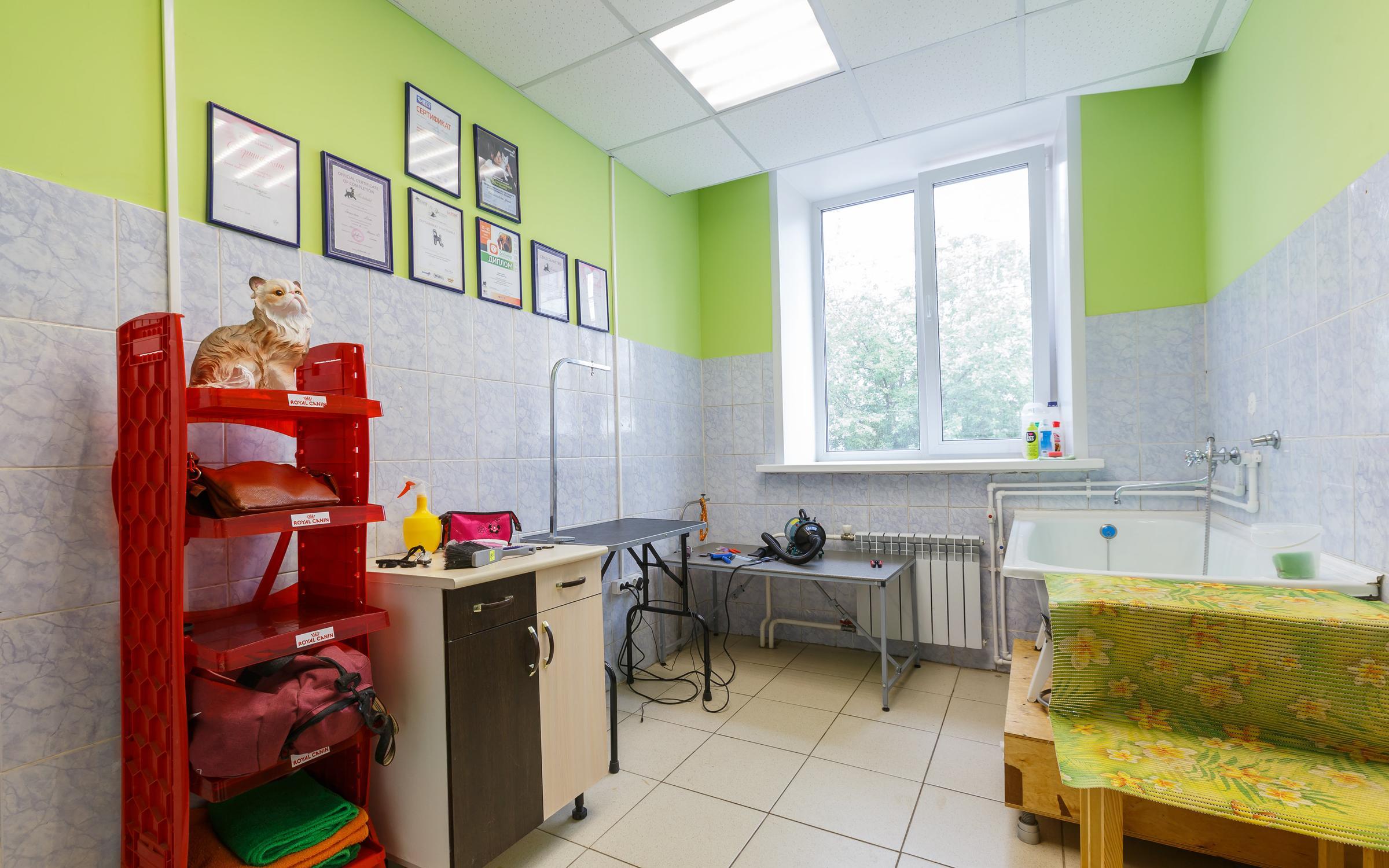 фотография Ветеринарной клиники Амикус на улице Толстого