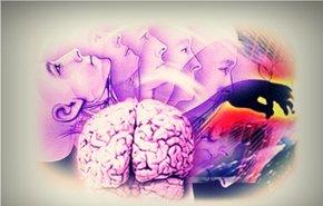 фотография Диагностика в психиатрии и психотерапии