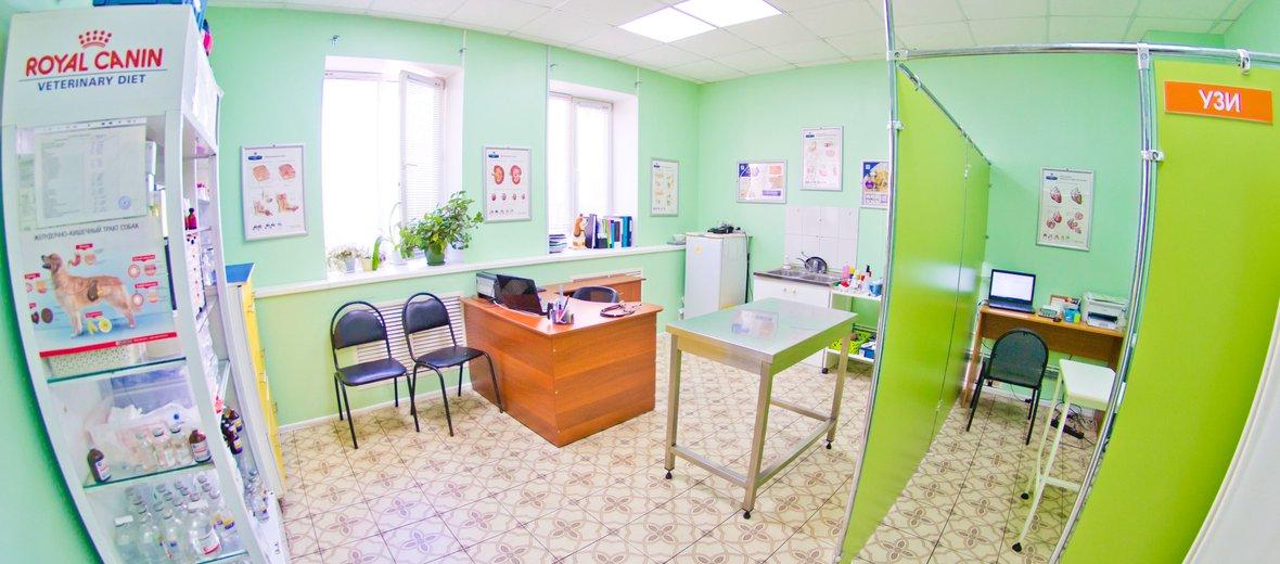Фотогалерея - Ветеринарный комплекс Барс на улице Чайковского