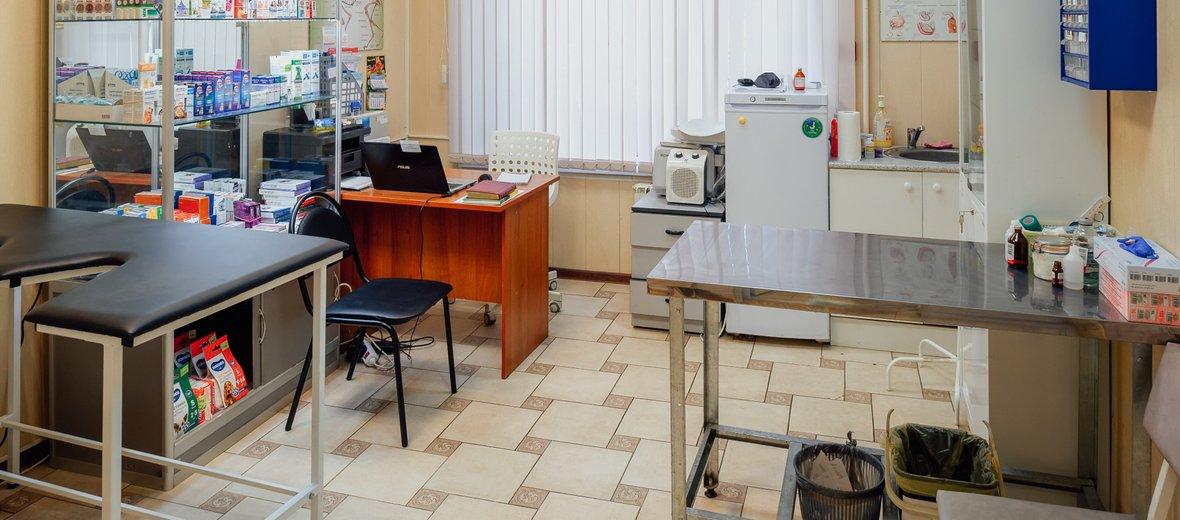 Фотогалерея - Ветеринарная клиника Веткруг на улице Пестеля