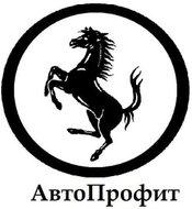 Автосервис АвтоПрофит на метро Площадь Александра Невского 2