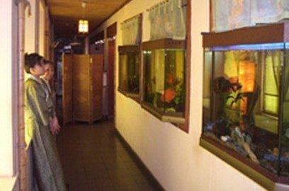 фотография Ресторана Васаби в Дурасовском переулке