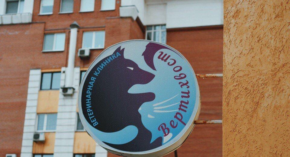 Фотогалерея - Ветеринарная клиника Вертихвост на Самарской улице