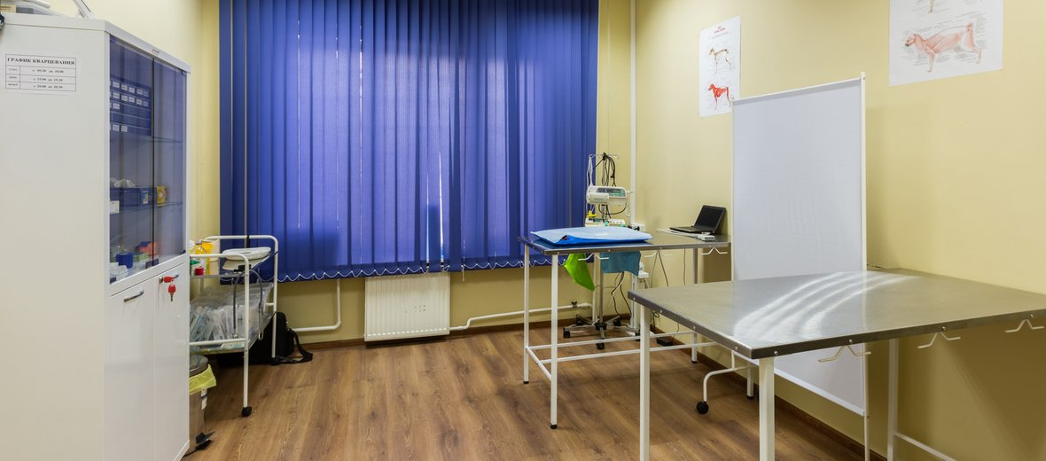 Фотогалерея - Ветеринарная клиника Veterinary Diagnostical Medicine