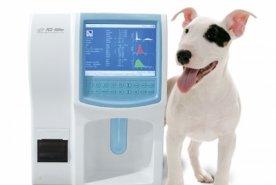 фотография Общие клинические анализы животных