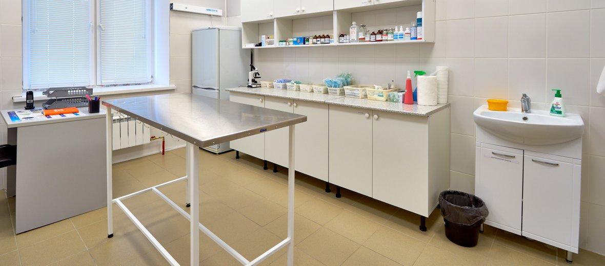 Фотогалерея - Ветеринарная клиника Пушистики в микрорайоне Азино-1