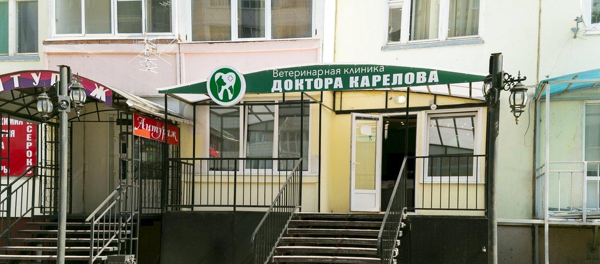 Фотогалерея - Ветеринарная клиника Доктора Карелова