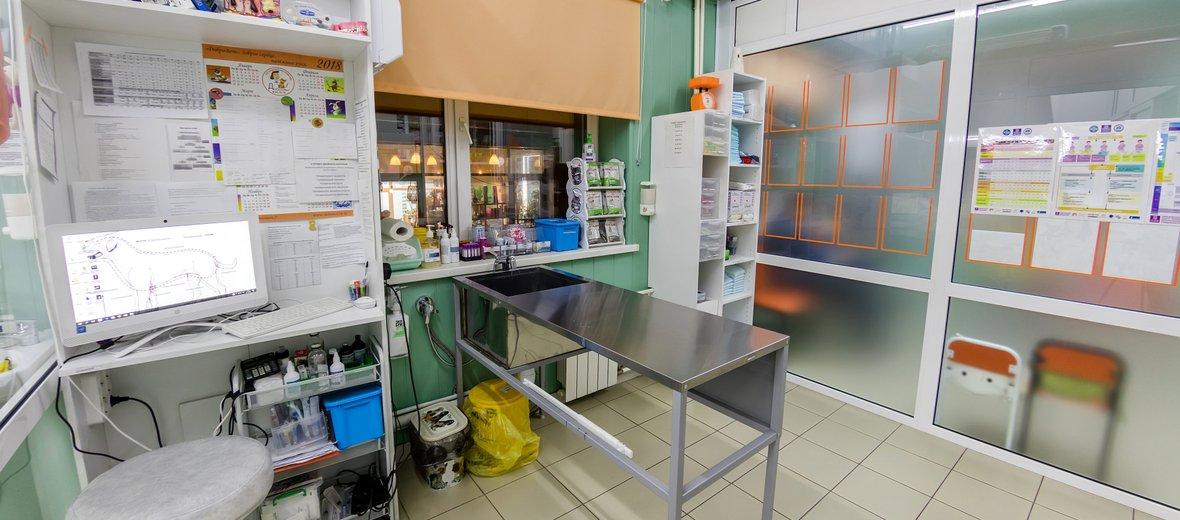 Фотогалерея - Ветеринарная клиника Добровет 24 на улице Омулевского