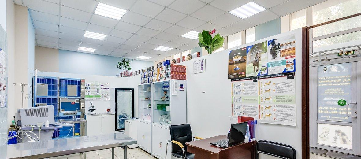 Фотогалерея - Ветеринарная больница им. А.Д. Третьякова на проспекте Космонавтов