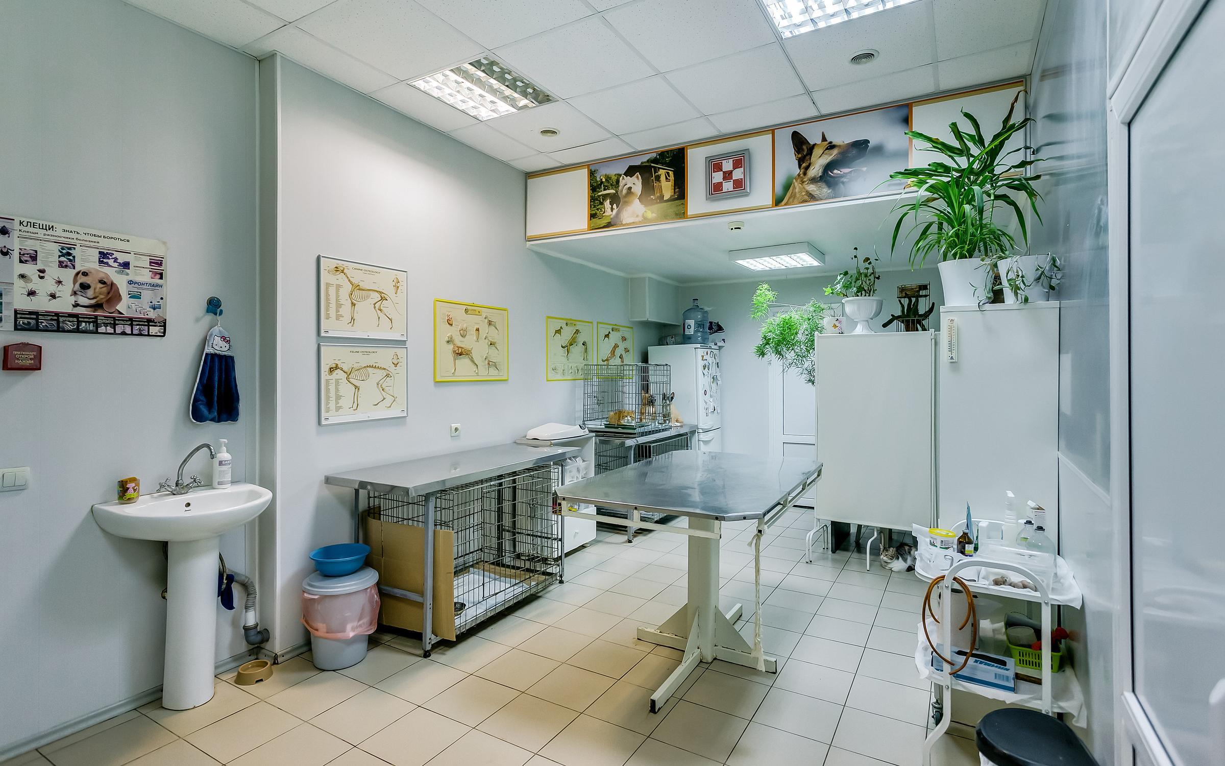 фотография Ветеринарной клиники доктора Зарубина в Ворошиловском районе