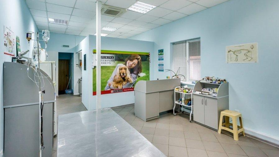 Фотогалерея - Ветеринарная клиника Пчелка на 14-й Линии