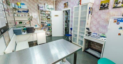 Ветеринарные клиники в туле на галкина