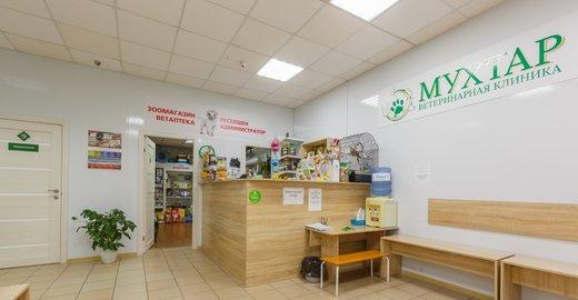 фотография Ветеринарной клиники Мухтар на проспекте имени газеты Красноярский рабочий