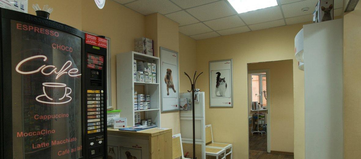 Фотогалерея - Ветеринарная клиника Перспектива