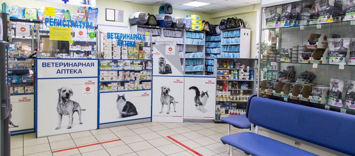 Фотогалерея - Ветеринарная клиника ЗооАкадемия на Ялтинской улице