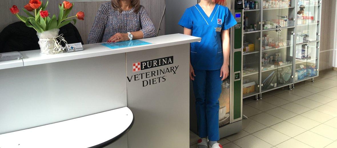 Фотогалерея - Ветеринарная клиника Айболит в Кировском районе