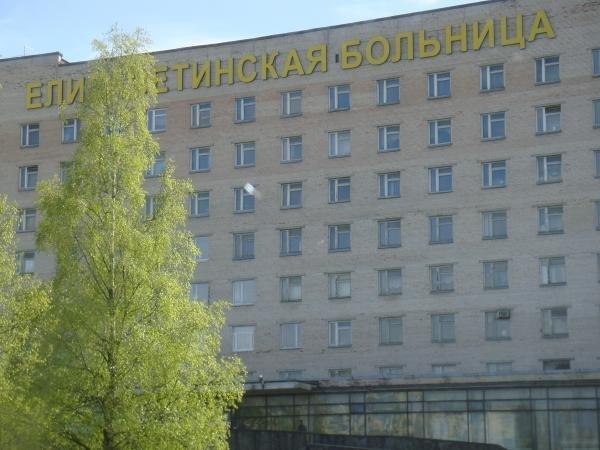 Фотогалерея - Елизаветинская больница на улице Вавиловых