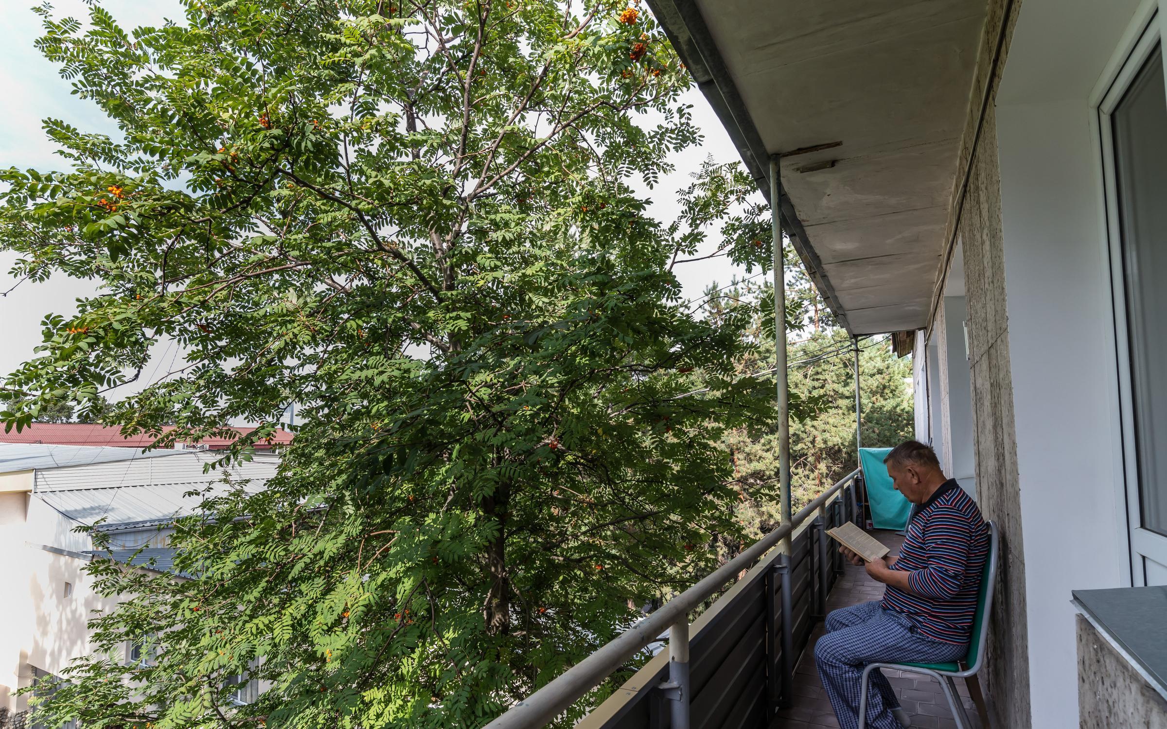 Педиатрия частная клиника москва